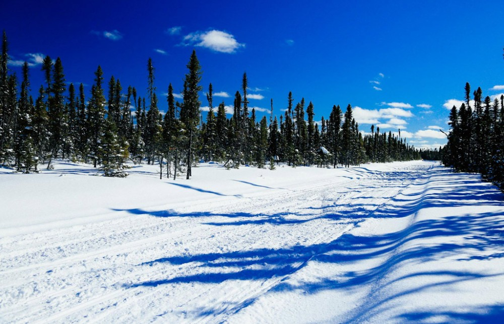 Northern Corridor Snowmobile Trails