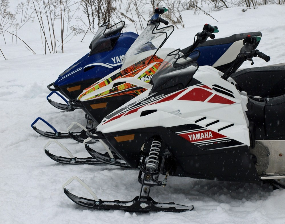 2018 Yamaha SnoScoots