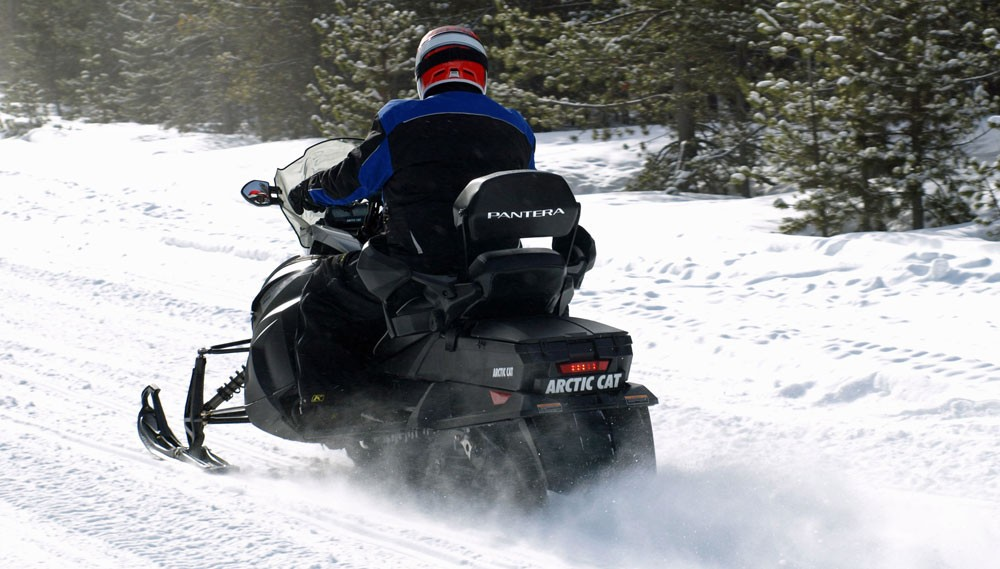 2018 Arctic Cat Pantera 6000 Action Rear