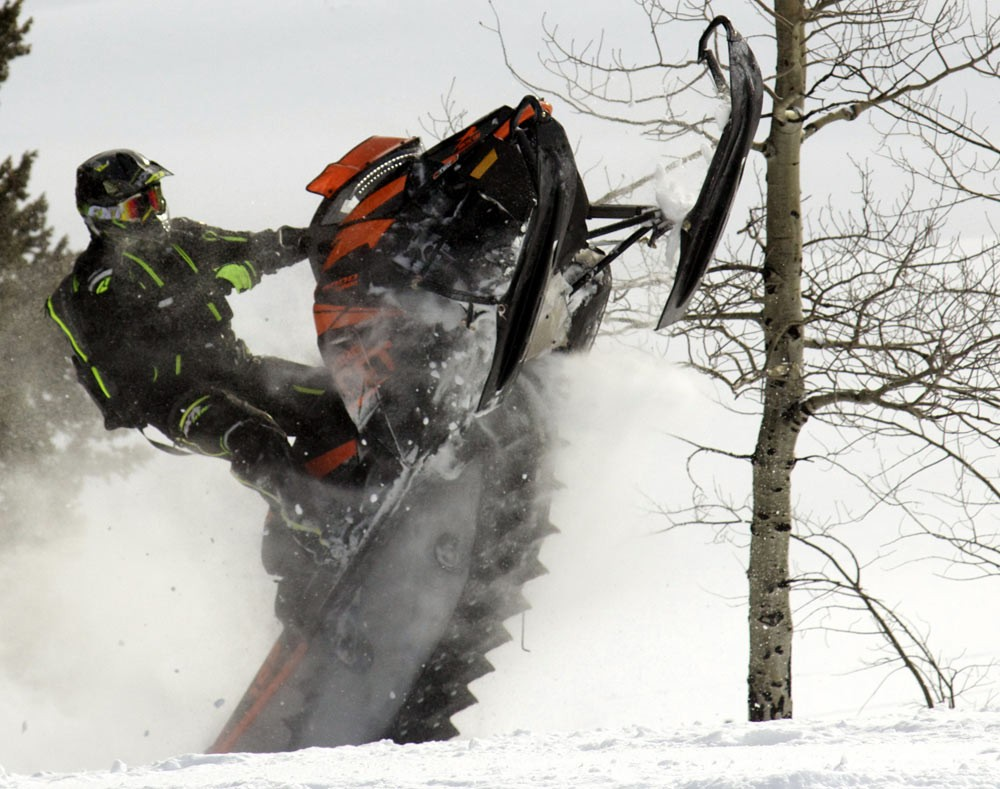 Arctic Cat King Cat