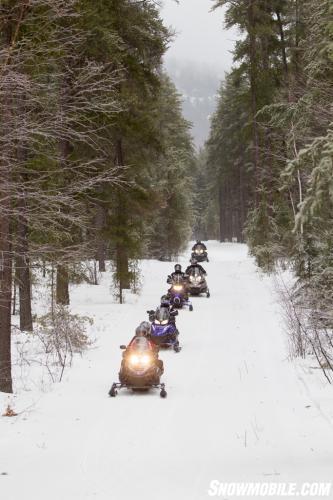 Tree Line Snowmobile Trail
