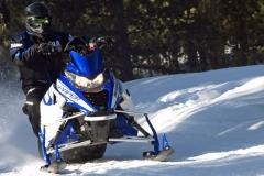 Yamaha-Viper-Action