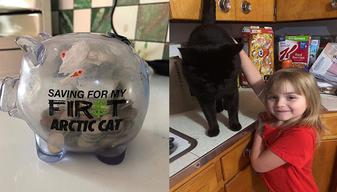 Sunshine Oelfke Arctic Cat Piggy Bank