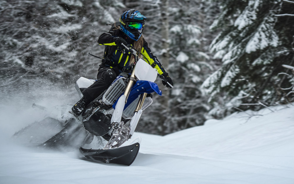 2019 Timbersled ARO 129 LE Action 2