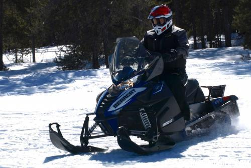 2016 Arctic Cat Bearcat 3000 LT Action Left