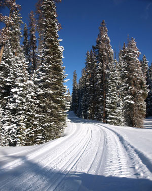 Without SnoPlan and clubs we wouldn't have groomed trails.