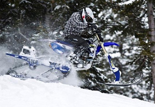 Timbersled Mountain Horse Snowbike