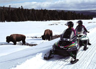 Pollution In The Backcountry - Snowmobiles in Yellowstone National Park
